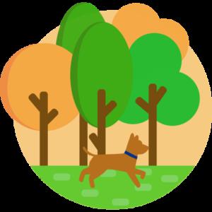 Wald im Hintergrund und ein Hund auf einer Wiese im Vordergrund